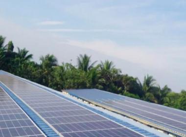 Buskowitz powers farms with solar units - Buskowitz Energy