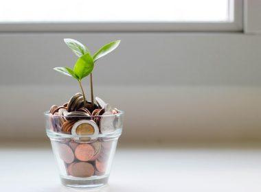 5 Ways to Start Saving Money and Live Sustainably - Buskowitz Energy