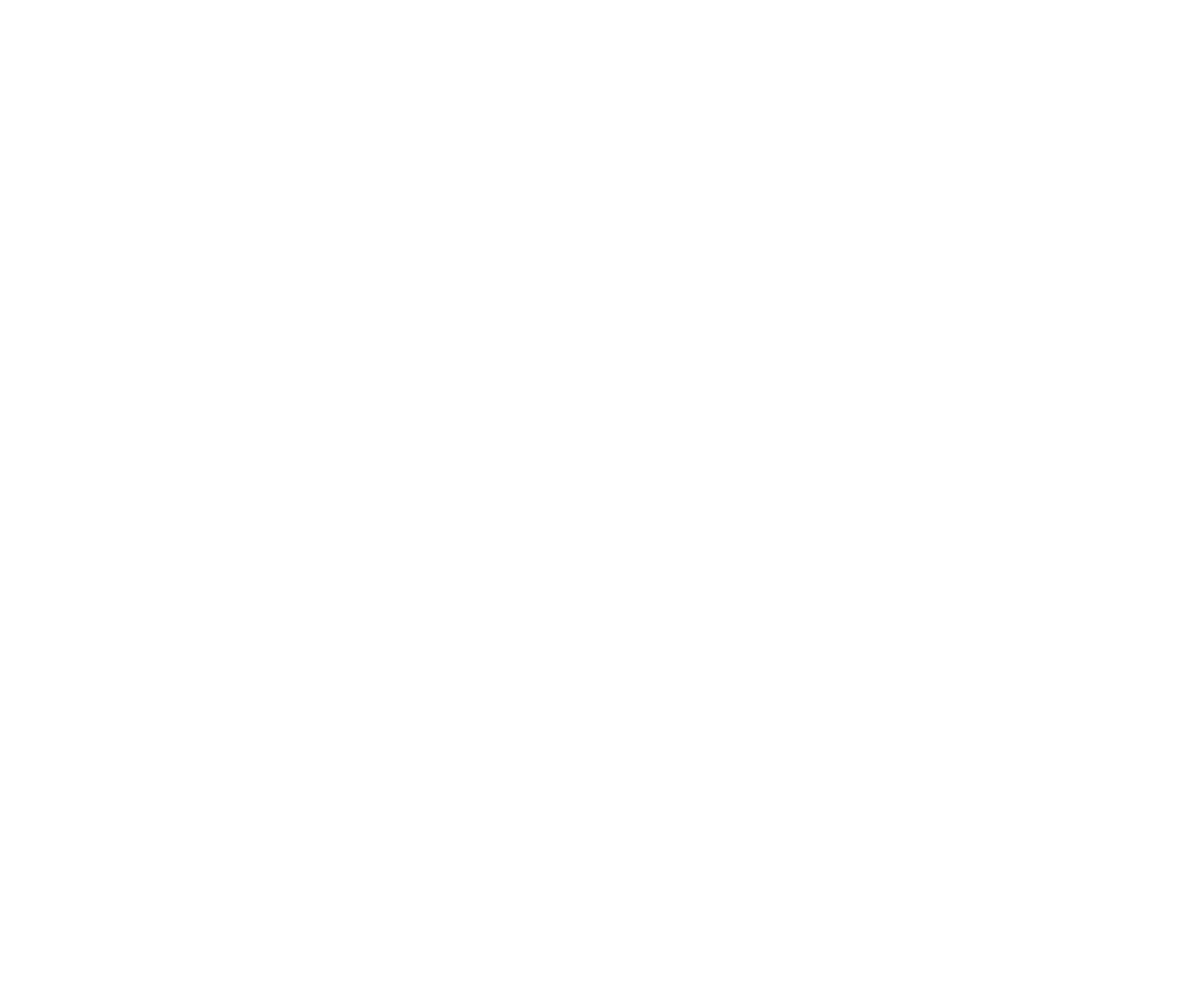 Buskowitz White Logo